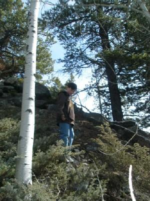 Paul pondering web