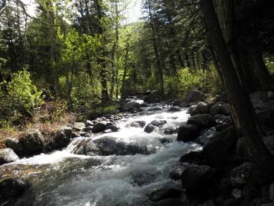 Camping river 2 web